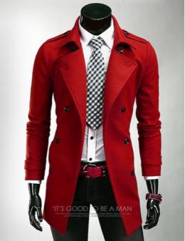 Мужское пальто №1